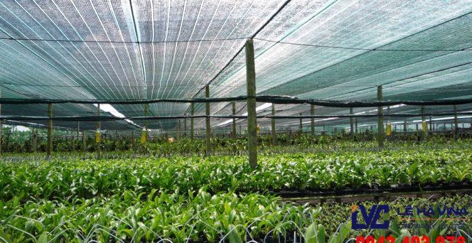 Công ty Lê Hà Vina, Lê Hà Vina, Lưới che nắng, Lưới che nắng Việt Nam, Lưới nhựa