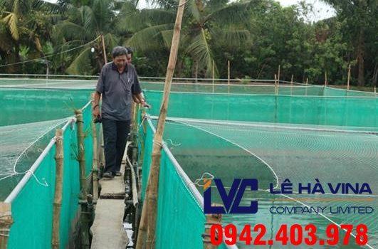 Lưới nuôi cá giống, Lê Hà Vina, Lưới, Lưới nhựa, Lưới nuôi cá của Lê Hà, Công ty Lê Hà Vina