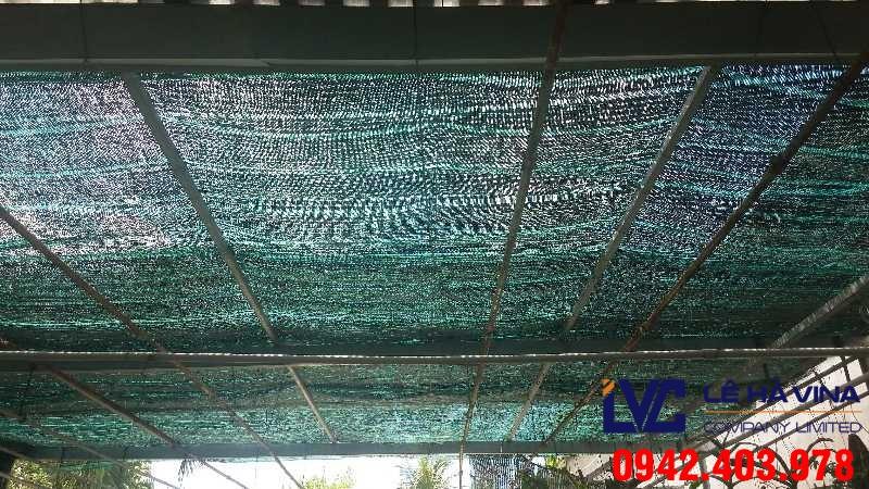 Lưới che nắng, Lê Hà Vina, Lưới che nắng Thái Lan, Lưới