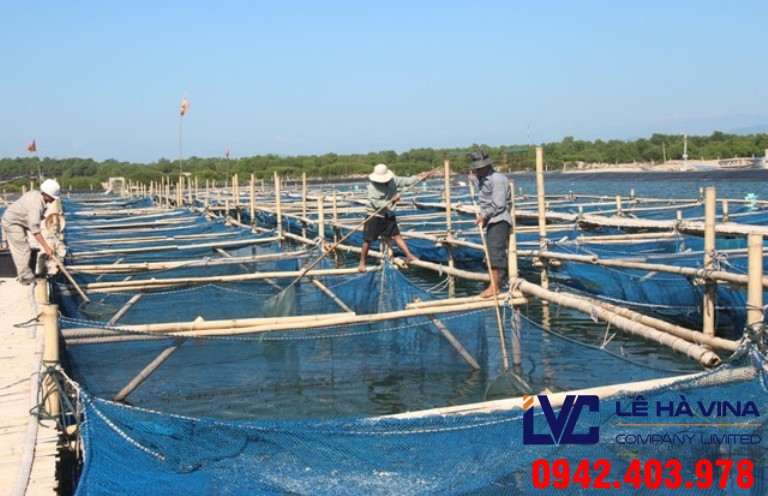 Lưới nuôi trồng thủy sản, Lưới nhựa, Lê Hà Vina, Lưới nhựa, Lưới