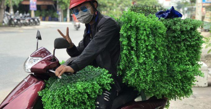 Cỏ nhân tạo ốp tường trang trí, Cỏ nhân tạo ốp tường, Lê Hà Vina, Cỏ ốp tường, Công ty TNHH Lê Hà Vina